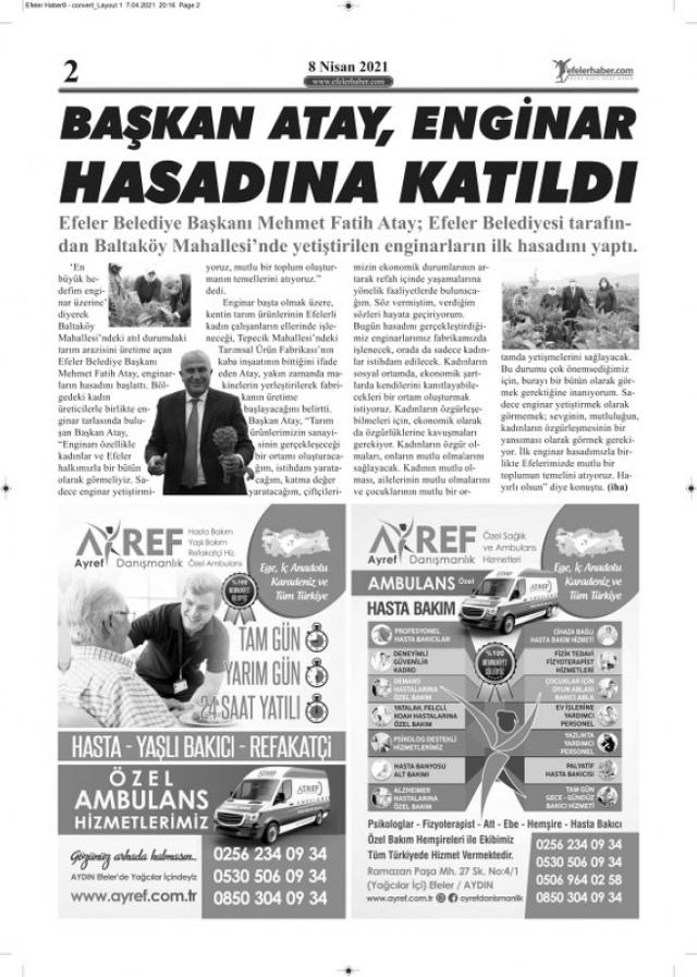 Sayfa 2