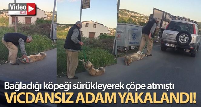 Bağladığı köpeği sürükleyerek çöpe atan şahıs yakalandı