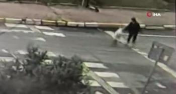 Bir kadın tasmasından sürükleyerek köpek çaldı
