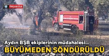 Büyükşehir İtfaiyesi Doğanbey'deki yangını büyümeden söndürdü