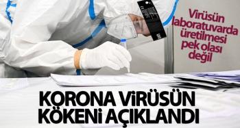 Dünya Sağlık Örgütü ekibi korona virüsün kökenini açıkladı