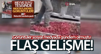 Meyvelerin üzerinde ayakkabıları ile gezen 4 kişi serbest bırakıldı