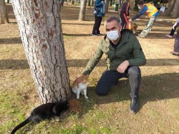 Sokağa çıkma kısıtlamasında Aydın'daki sokak hayvanları yalnız bırakılmadı