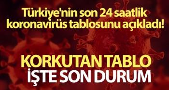 Türkiye'de son 24 saatte 42.551 koronavirüs vakası tespit edildi