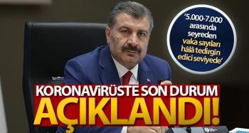 Türkiye'de son 24 saatte 7.103 koronavirüs vakası tespit edildi