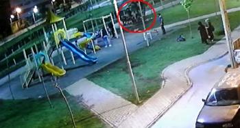 Üzerinde çocukların bulunduğu kamelyanın çökme anı kamerada