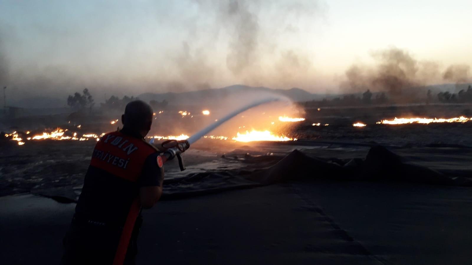 Aydın'da biyogaz tesislerinde yangın