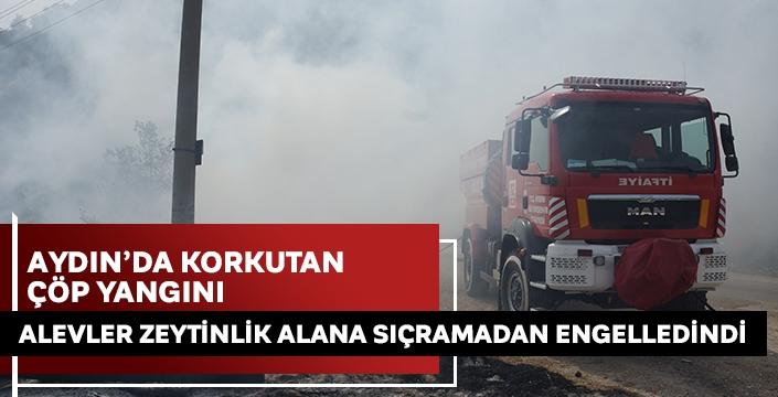 Aydın'da çöp yangını