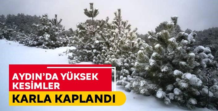 Aydın'da yüksek kesimler karla kaplandı