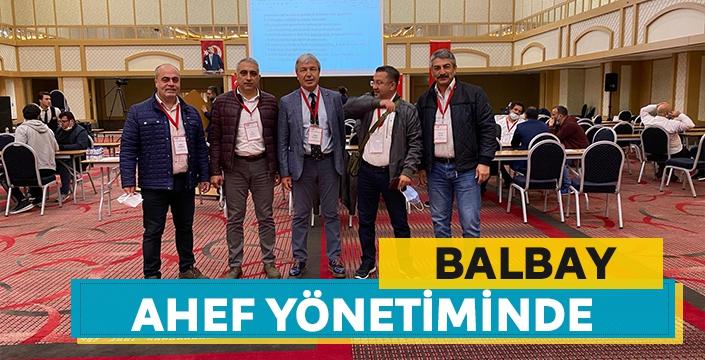 Balbay, AHEF yönetiminde