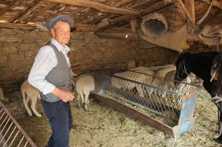 Efeler diyarının son Yörüğü atından ve koyunlarından vazgeçemiyor