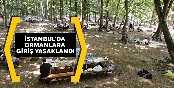İstanbul'da ormanlara giriş yasaklandı