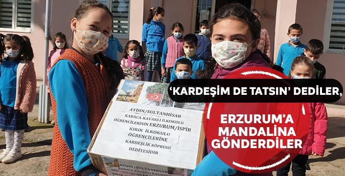'Kardeşim de tatsın' dediler, Erzurum'a mandalina gönderdiler