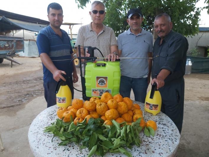 Kimsenin kıymetini bilmediği turunç bitkisinden dezenfektan üretildi