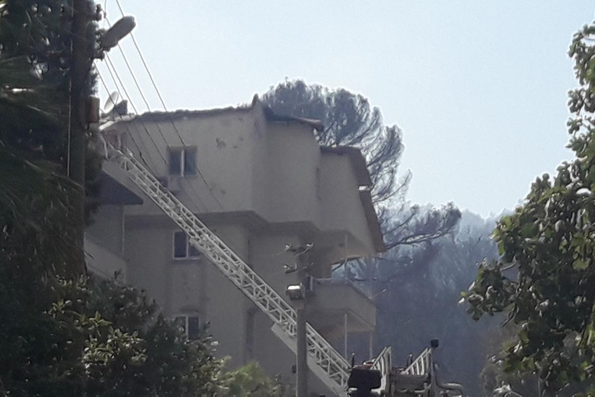 Marmaris'teki yangında iki ev zarar gördü