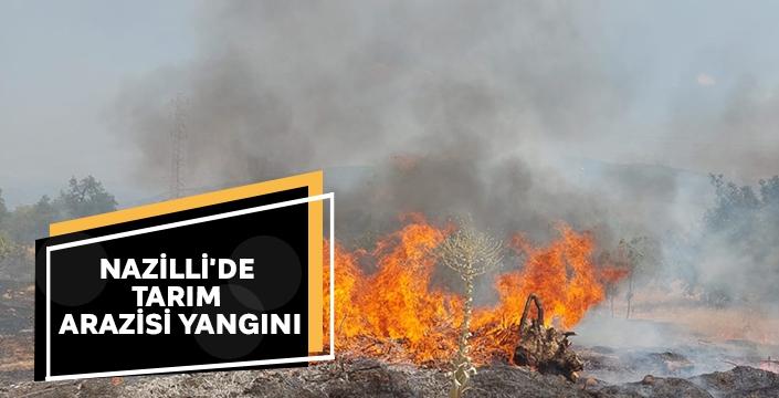Nazilli'de tarım arazisi yangını