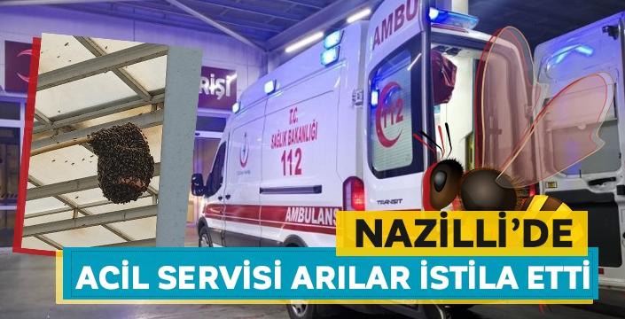 Nazilli Devlet Hastanesi'ni arılar bastı!