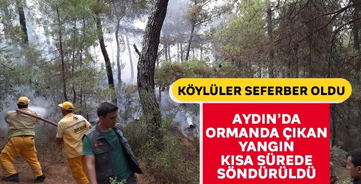 Ormanda çıkan yangına köylüler koştu... İşletme Müdüründen duyarlı vatandaşlara teşekkür!
