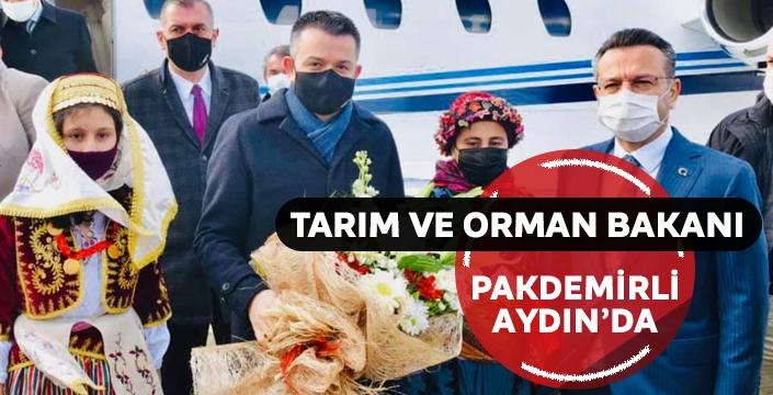 Tarım ve Orman Bakanı Pakdemirli: 'Demokratik söylemlerin adresi sokaklar değil, siyasi partilerdir'