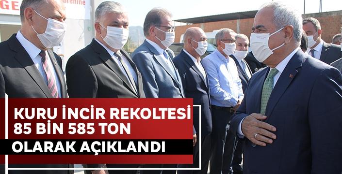 Tarım ve Orman Bakan Yardımcısı Tunç, Aydın'da incir rekoltesini açıkladı