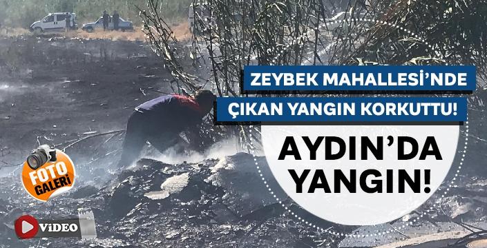 Zeybek Mahallesi'nde bulunan Otluk arazide çıkan yangın korkuttu!