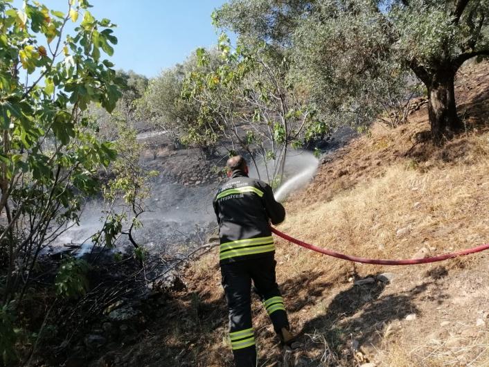 Zirai alandaki yangın evlere ulaşmadan söndürüldü